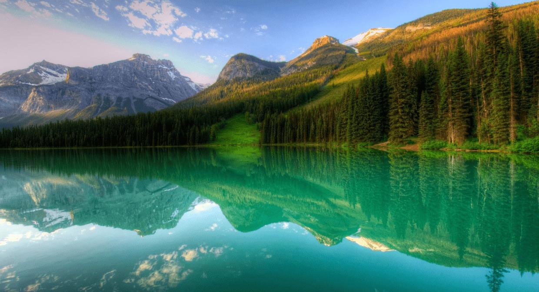 reflect2